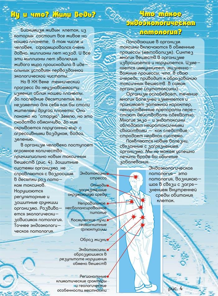 Схема эндоэкологическая реабилитация по левину5